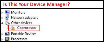 Other Devices Coprocessor
